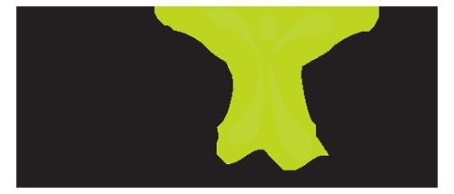 Pain Fix Protocol - Logo